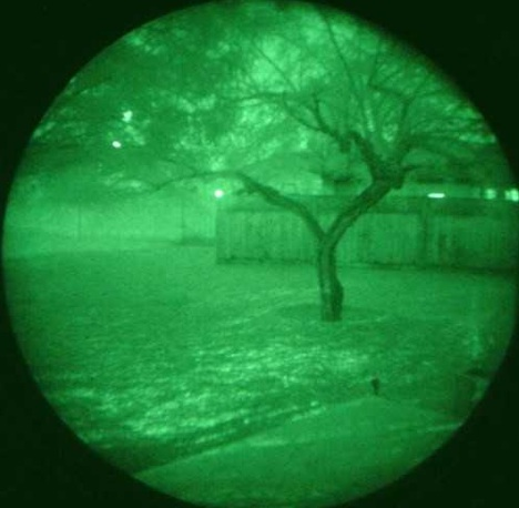night-vision-cats