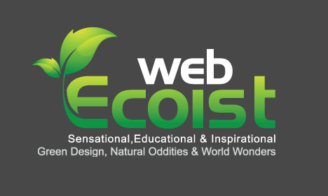 webecoist logo