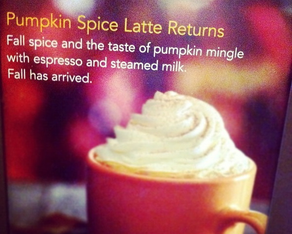 Scary Spice: 10 Odd Autumn Pumpkin Spice Foods & Snacks