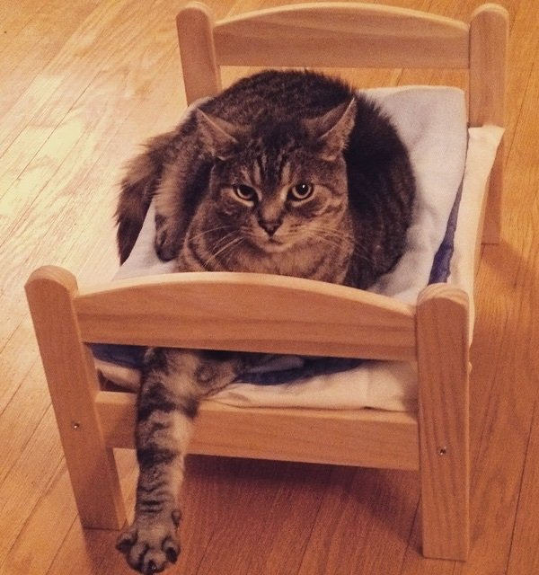 IKEA Doll Beds Are Going To The Dogs & Cats