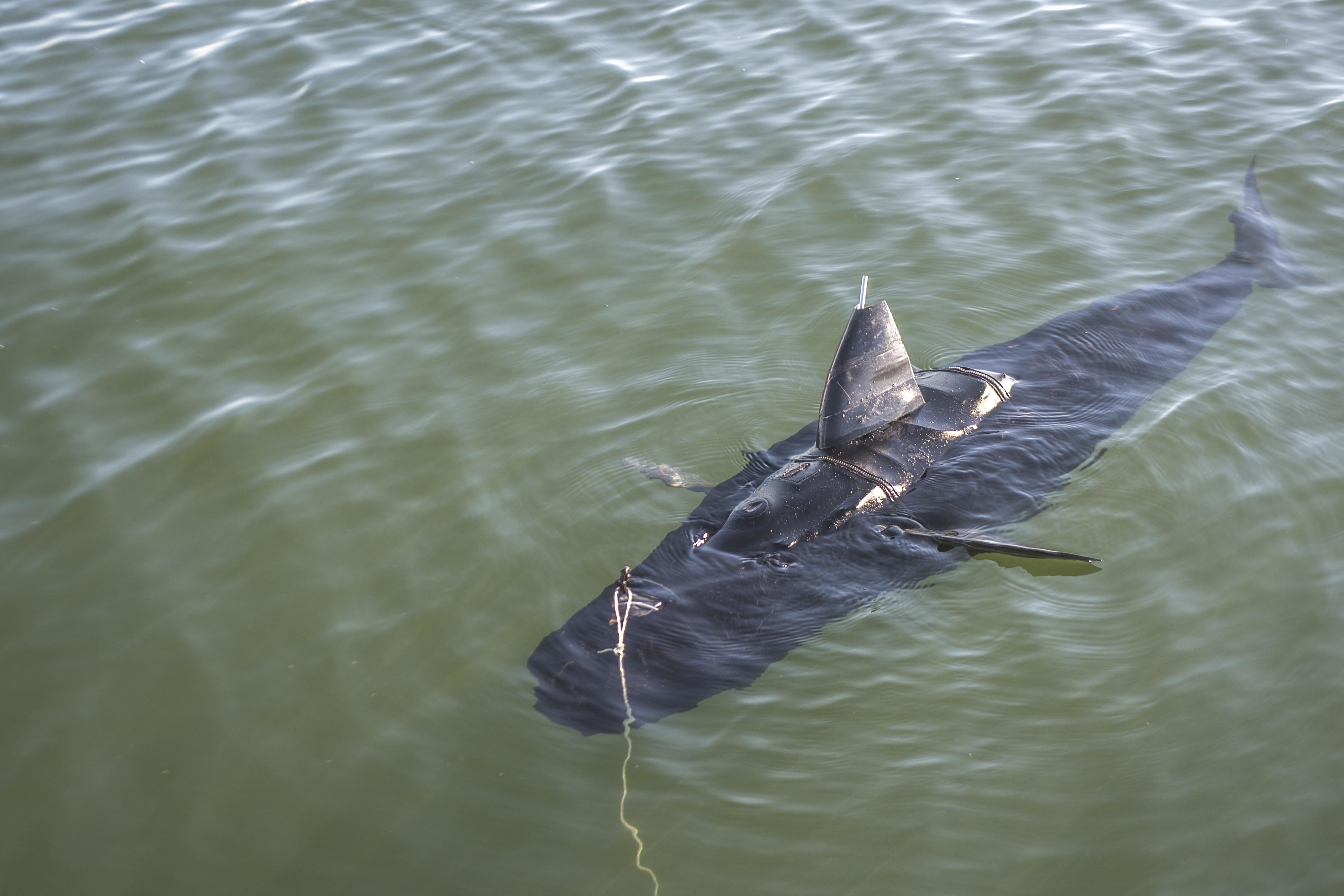 The Navy's New Drone Looks and Swims Like a Shark!