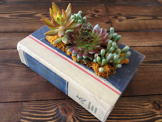 modern planters book 2