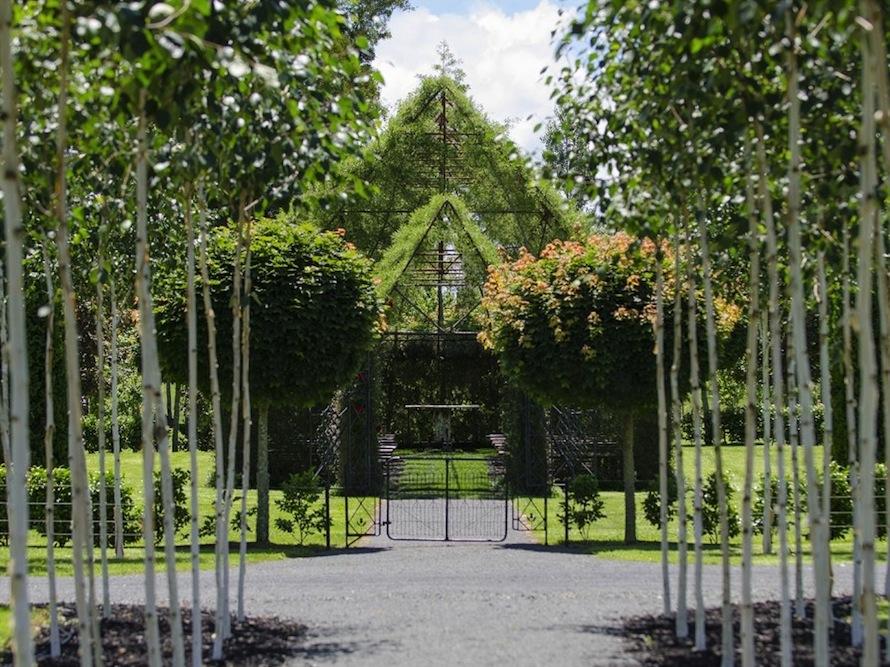 living trees church 3