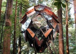 Hangout: Pinecone Treehouse Rests Among Redwoods